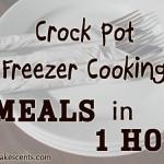 Crock Pot Freezer Cooking Tutorial: 6 Meals in 1 Hour