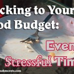 Sticking to Your Food Budget Even in Stressful Times