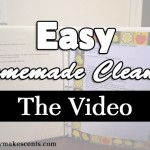 Homemade Cleaners – The Video