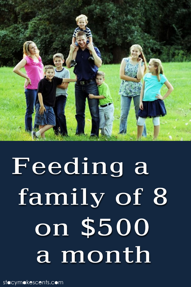 Feeding A Family Of 8 On $500 A Month