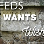Needs, Wants, and Wishes