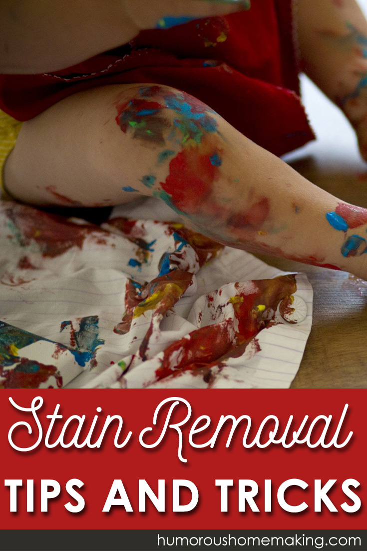 Stain Removal Tips & Tricks. Great ideas to tackle a variety of your most stubborn stains!