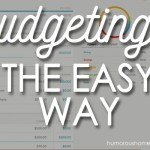 Budgeting the Easy Way. It doesn't do any good to have a budget, if you don't stick to it. This great software can help you do just that. Check it out!