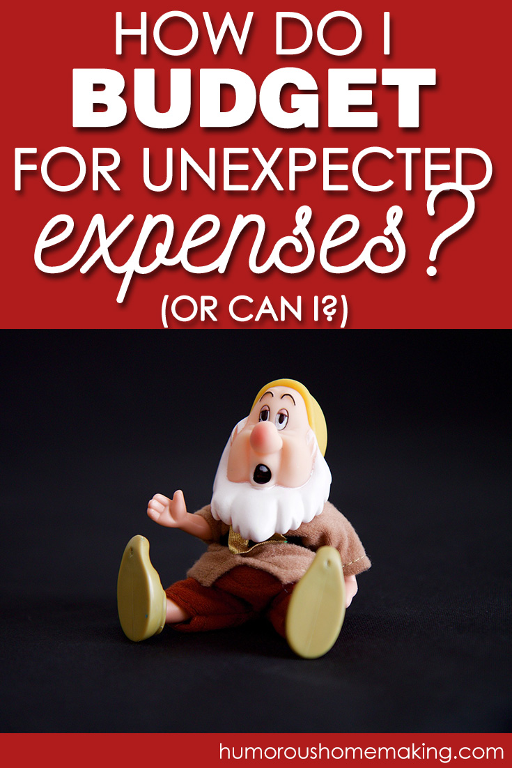 budget for unexpected expenses
