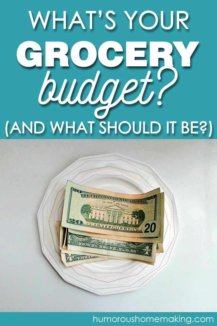 grocery budget