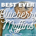 best every blueberry muffin recipe