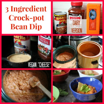 3 Ingredient Crock-pot Bean Dip