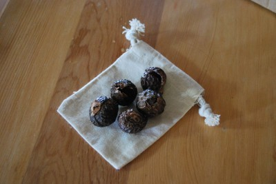 Soap nut berries